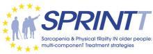 Logo projektu Sprintt